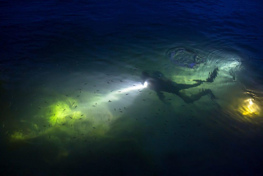 kurs nurkowanie w nocy
